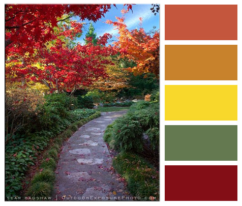 October Color Palette Of The Month Suncrest Homes